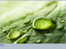 Screenshot der Domain adcd.de