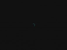 Screenshot der Domain addi1.de