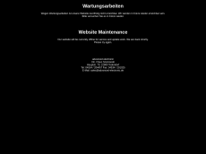 Screenshot der Domain advanced-electronic.de