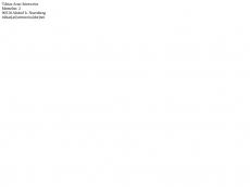 Screenshot der Domain agentur-jugendstil.de