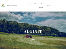 Screenshot der Domain alginit.de