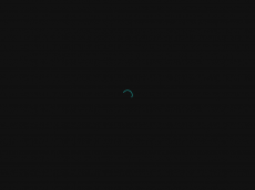 Screenshot der Domain aliu-service.de
