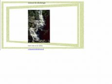 Screenshot der Domain alkoholismus-info.de
