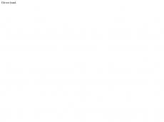 Screenshot der Domain alleinunterhalter-werner.de