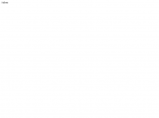 Screenshot der Domain alleinunterhalterin.de