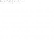 Screenshot der Domain allemann-bulea.de
