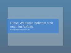Screenshot der Domain alles-in-schwarz.de