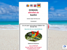 Screenshot der Domain allesflat.de