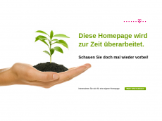 Screenshot der Domain allesfrick.de