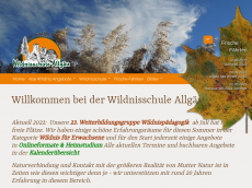 Screenshot der Domain allgaeuscout.de