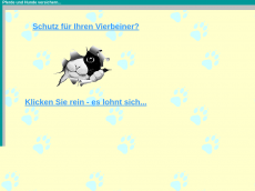 Screenshot der Domain allifanz.de