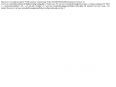 Screenshot der Domain allroundparty.de