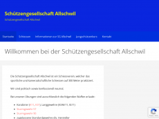 Screenshot der Domain allschwil.com