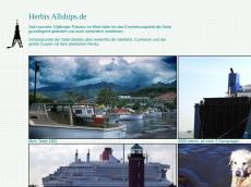 Screenshot der Domain allships.de