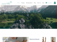 Screenshot der Domain alpin-med.de