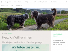 Screenshot der Domain amazing-beardies.de