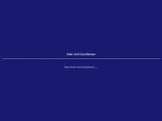 Screenshot der Domain amazonen-tm.de