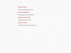 Screenshot der Domain ayczapfen.de
