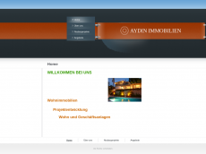 Screenshot der Domain aydin1immobilien.de