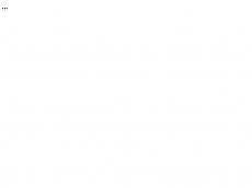 Screenshot der Domain baerbels-puppenwerkstatt.de