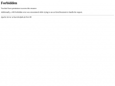 Screenshot der Domain baerchenfunk.de