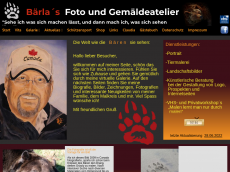 Screenshot der Domain baerla.de