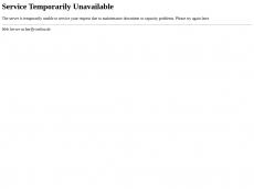 Screenshot der Domain barfly-online.de