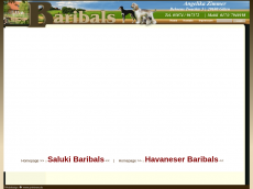 Screenshot der Domain baribals.de
