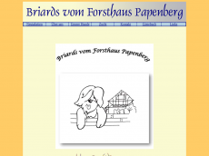 Screenshot der Domain briard-aragorn.de