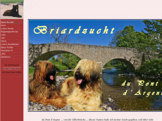 Screenshot der Domain briard-hessen.de
