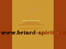 Screenshot der Domain briard-spirit.com