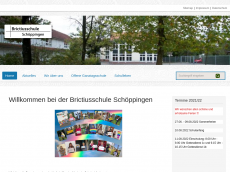 Screenshot der Domain brictiusschule.de