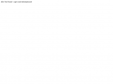 Screenshot der Domain cape-coral-information.de