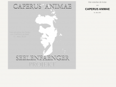 Screenshot der Domain caperus-animae.de