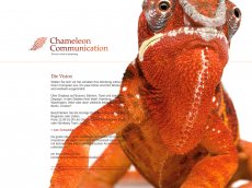 Screenshot der Domain chameleon-communication.com
