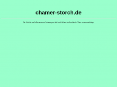 Screenshot der Domain chamer-storch.de