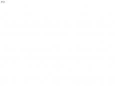 Screenshot der Domain champagnerkoksundnutten.de