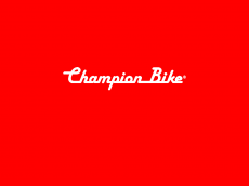 Screenshot der Domain champion-bike.com
