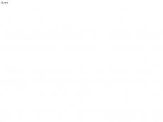 Screenshot der Domain coaching-manufactur.de