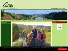 Screenshot der Domain cycling-tours.de