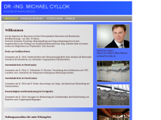 Screenshot der Domain cyllok.de