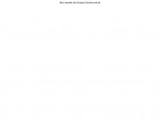 Screenshot der Domain fischersweb.de