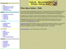 Screenshot von girlitz.de