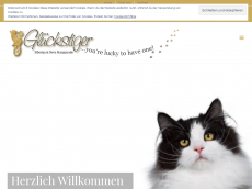 Screenshot der Domain glueckstiger.de