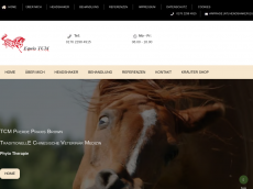 Screenshot der Domain headshaker.eu