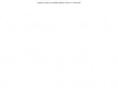 Screenshot der Domain imaginum.de