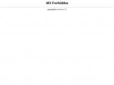 Screenshot der Domain immobilien-handeln.de