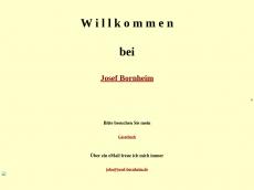 Screenshot der Domain indrani.de