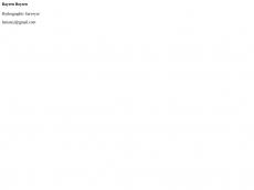 Screenshot der Domain ipani.de