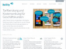 Screenshot der Domain itellity.com